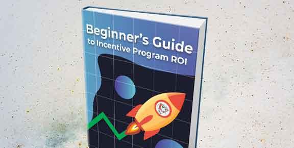 Beginners Guide ROI Ebook
